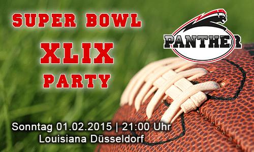 Super Bowl Party 2015